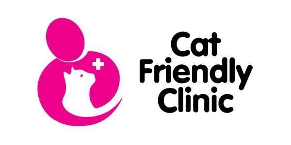 VETERINARIO GATOS CASTELLON
